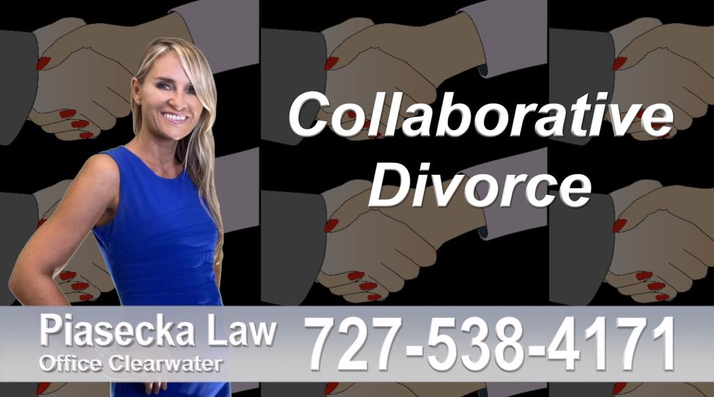 Polish Lawyer Clearwater, Collaborative, Divorce, Attorney, Agnieszka, Piasecka, Prawnik, Rozwodowy, Rozwód, Adwokat rozwodowy, Najlepszy Best